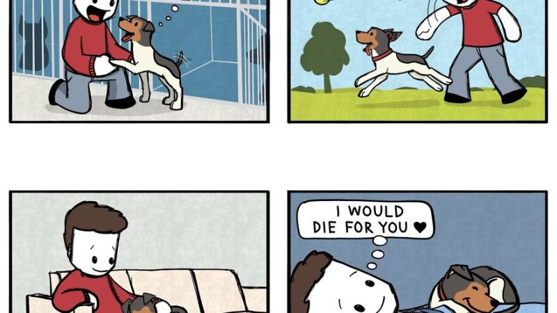 19 Clever Dog Comics Any Dog Lover Can Relate To