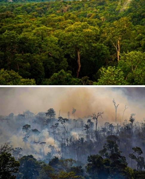 15 Fotografii Documentare sinistre care confirmă că clima se schimbă incredibil de repede