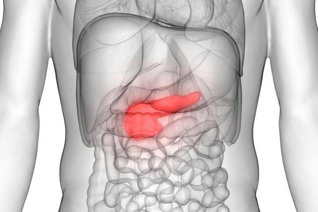 10 Produse pentru tratamentul Pancreasului