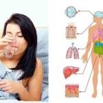 Iată 10 Motive pentru a  începe să beți apă dimineața pe stomacul gol