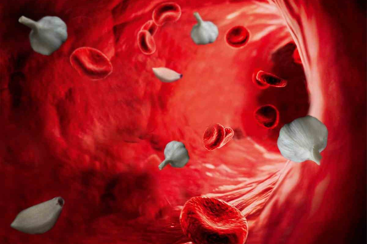 Curățarea sângelui – Remedii Naturiste, Dietă, Alimente pentru Curătarea sangelui de Toxine