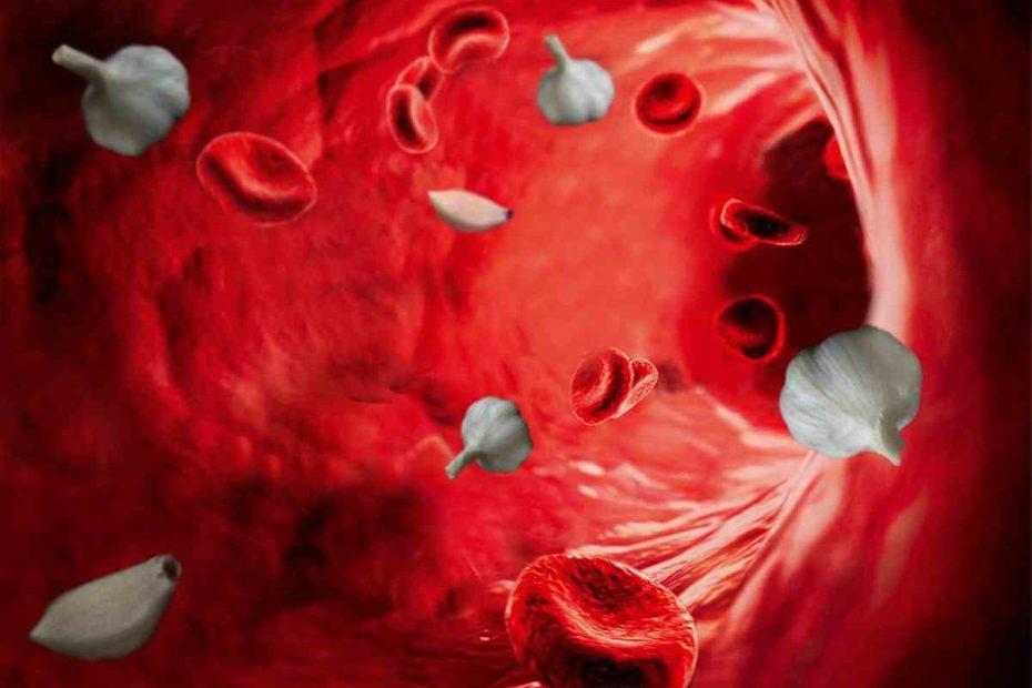 Cele mai bune remedii pentru curăţarea sângelui