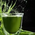 Ce este Clorofila lichidă ?  Sângele verde al plantelor / Clorofila Beneficii pentru sănătate