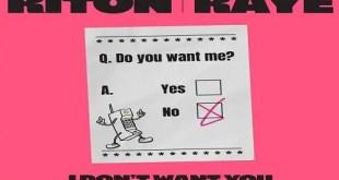 Riton x RAYE - I Don't Want You