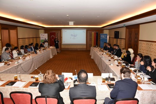 2020.01.30_TUR_GIZ_PEP_SC_Meeting_Istanbul (2)
