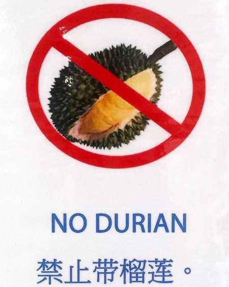 Durian Stinky Fruit - Bugis Market.jpg