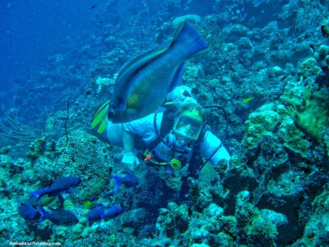 Scuba Diving Full Face Mask - Curacao in Hurricane Season.jpg