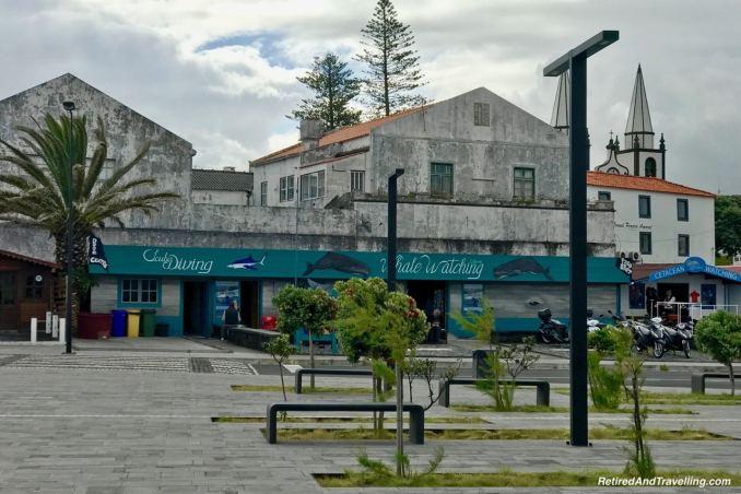 Madelena Port - Historical Perspective of Pico Island.jpg