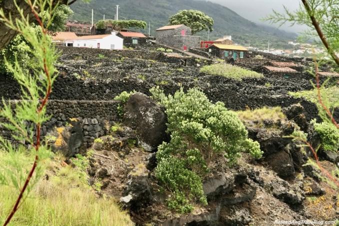 Trolha Coast - Historical Perspective of Pico Island.jpg