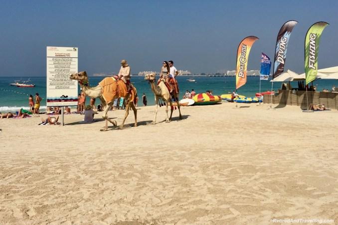 Beach Camels Dubai Marina.jpg