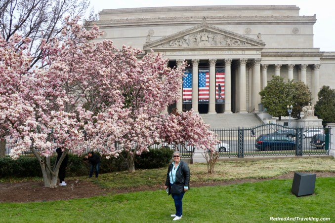 Blossom Views - Experience Cherry Blossoms In Washington DC.jpg