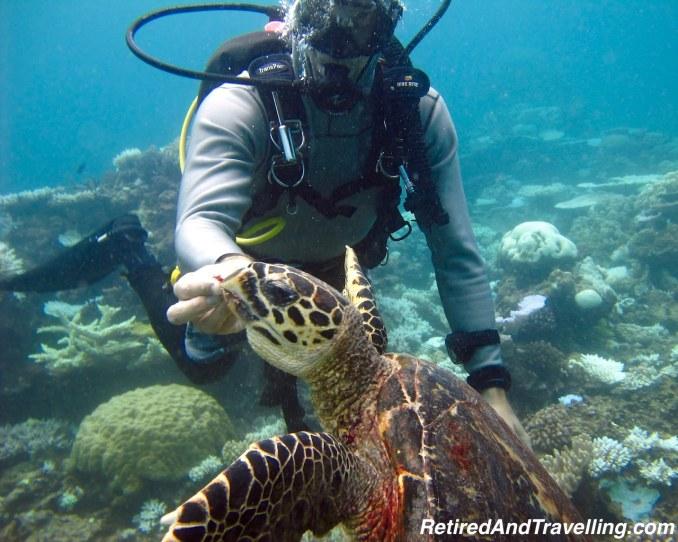 Australia Great Barrier Reef Scuba Dive - Favourite Travel Blog Posts RetiredAndTravelling.jpg