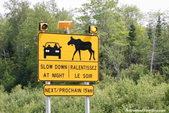 Moose Signs.jpg