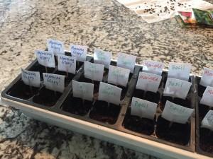 seeds name tags