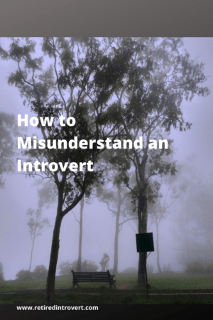 How to Misunderstand an Introvert