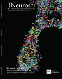 Journal of Neuroscience Cover