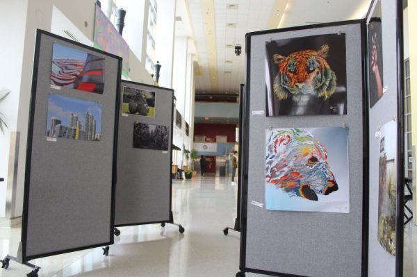 Art Week Presents Amazing Retriever