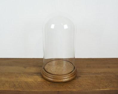 Cloches de verre sur support bois