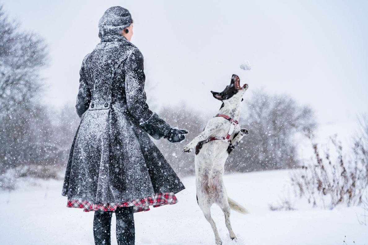 RetroCat beim Spazierengehen im Schneesturm
