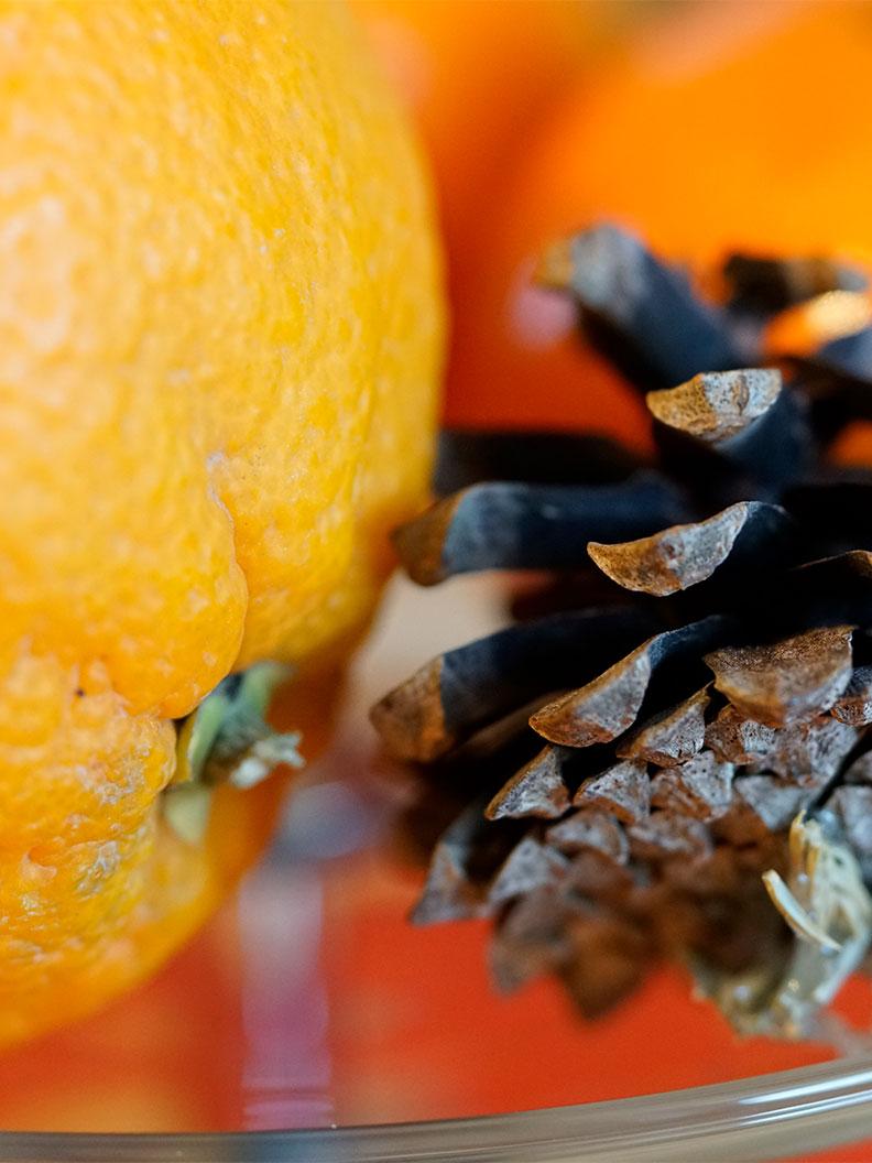 RetroCats Wochenrückblick: Eine Orange zur Weihnachtszeit