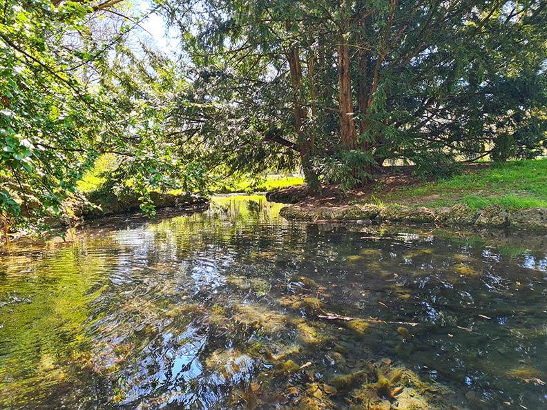 Ein Teich in einem Park in München