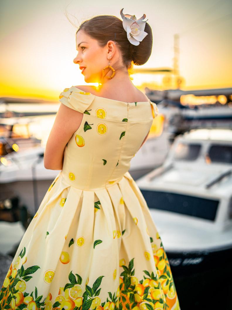 RetroCat mit Zitronenkleid und Haarblume am Hafen