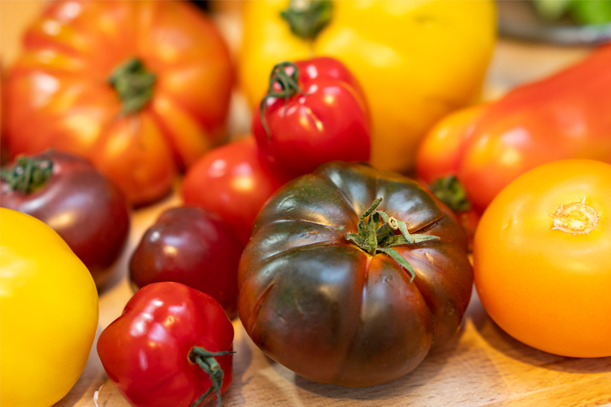 Tomaten-Ernte von RetroCat
