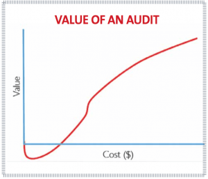 Value of an audit