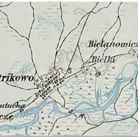 Петриково (123retro)
