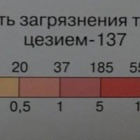 Динамика радиоактивного  загрязнения территории района цезием-137 за семь десятилетий после аварии на атомной станции