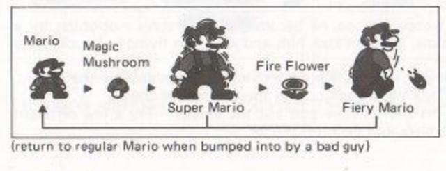 Super Mario Bros Manual