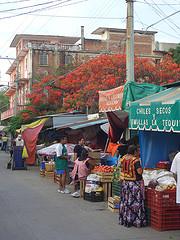 El mercado de Ixtepec, Oaxaca