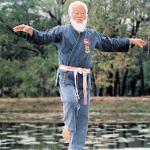 Karate-Grossmeister führt Weißen Kranich vor