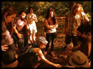 brooklyn foraging