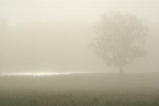 ghostly dawn1