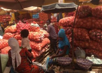 L'oignon local retrouve les étals, sensible baisse des prix