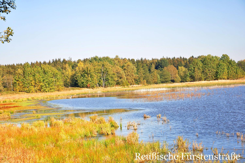 Dreba-Plothener Teichgebiet