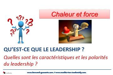 Couverture article qu'est-ce que le leadership