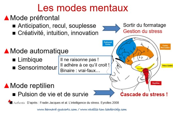 Les modes mentaux