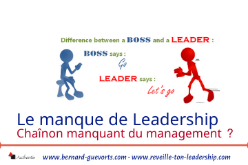 Couverture article manque de leadership