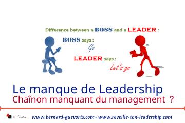 Couverture article manque de leadership