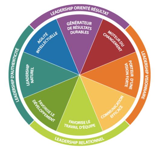 Modèle Insigths de leadership