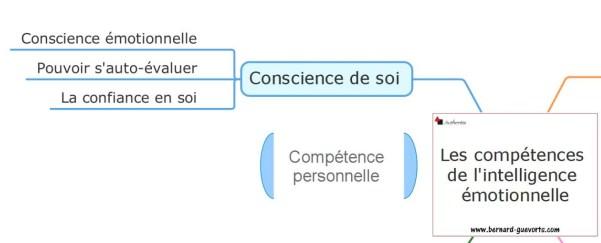 La conscience de soi dans l'intelligence émotionnelle