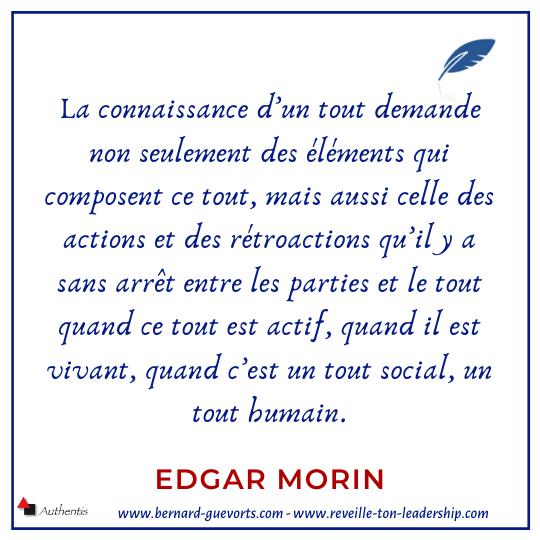 Citation Edgar Morin sur vision globale