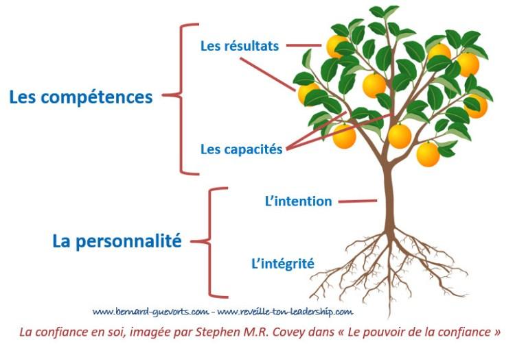 La confiance en soi et la métaphore de l'arbre et ses fruits
