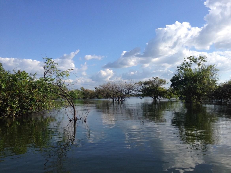 Rio Tapajós. Foto Livia Mata