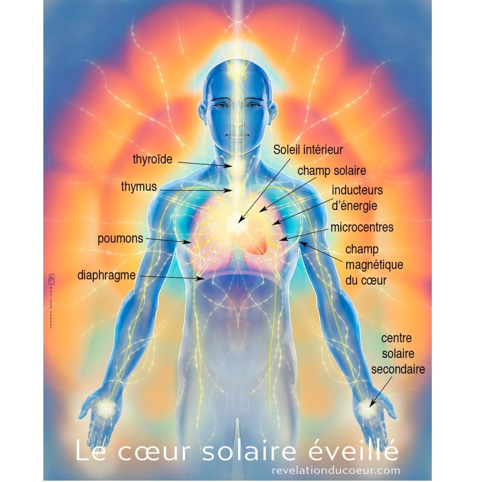 Le-cœur-solaire-eveille- carre