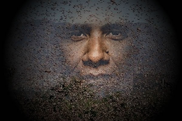 Living La Vida Locust: Biblical Obama Sign?