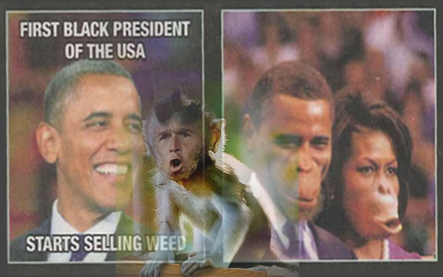 More Presidential Monkey Business