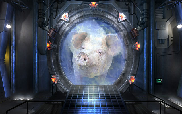 Pigs, Demons, and Water Portals